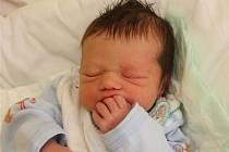 Holčička Tereza Němotová přišla na svět 28. září 2010 v 15:10 hodin v chomutovské porodnici. Vážila 2,49 kilogramu a měřila 47 centimetrů. Mamince Tereze  Němotové z Loun gratulujeme.