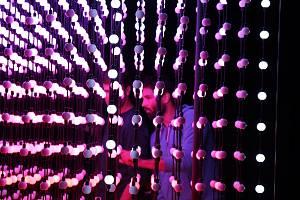 Festival Kouzlo světla v Lounech. Na snímku instalace u synagogy
