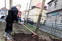 Lepší podmínky k růstu bude mít chmel na nejmenší chmelničce na světě, která je na žateckém náměstí. Pracovníci Chmelařského institutu, který se o ni stará, totiž chmelničku pohnojili.