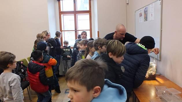 Děti se v lounské knihovně seznámily s pavouky