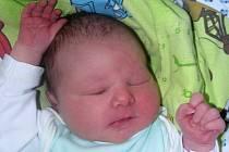 Adam Palkoska se narodil 15. srpna 2017 ve 12.10 hodin mamince Michaele Olejníkové z Hnojnic. Vážil 3620 g a měřil 50 cm.
