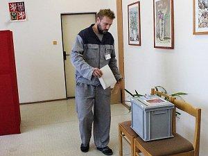 Volby ve věznici v Novém Sedle
