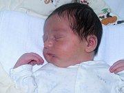 Pavel Šelemba se narodil 14. srpna 2017 v 5.06 hodin mamince Olze Šelembové ze Žatce. Vážil 3520 g a měřil 48 cm.