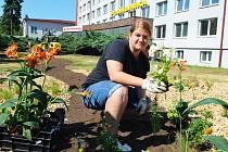 Květinová výzdoba před žateckou poliklinikou.