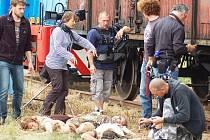 Natáčení snímku 8 hlav šílenství v Kašticích na Podbořansku. Na snímku režisérka Marta Nováková (v pruhovaném)