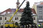 Stavba vánočního stromu na Mírovém náměstí v Lounech