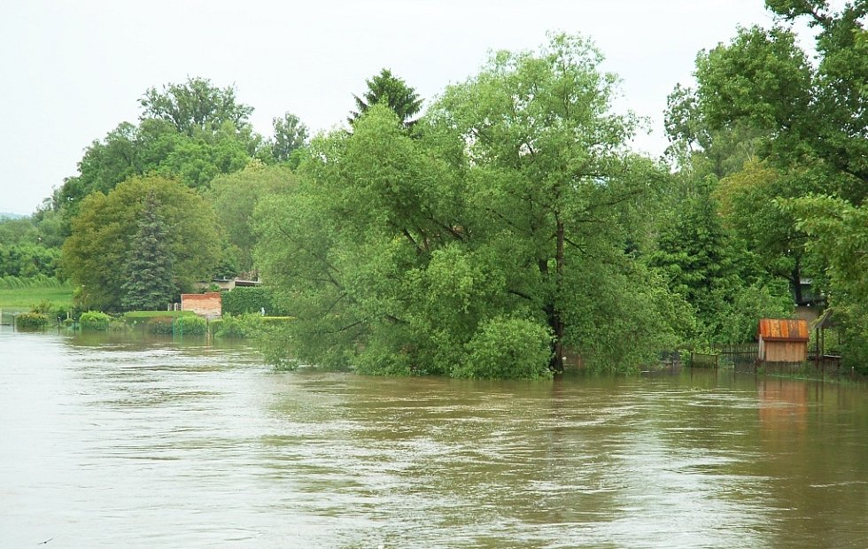 Úterý 4. června 2013. Ohře se ze břehů vylilo i v Počedělicích.