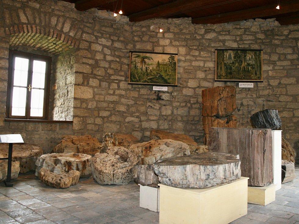 Muzeum Zkamenělý les v Lounech