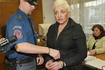 Irina Kakitecha stanula u Krajského soudu v Ústí nad Labem za ublížení na zdraví s následkem smrti. Pobodala svého přítele, který zemřel.