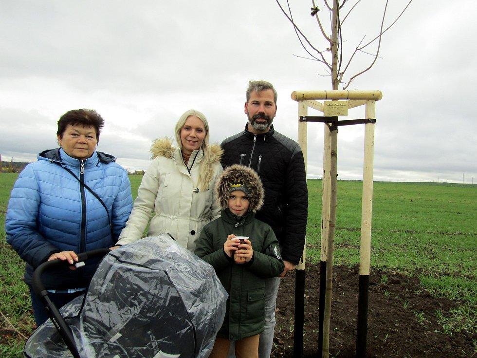 Dalších patnáct stromků přibylo do aleje v Podbořanech.