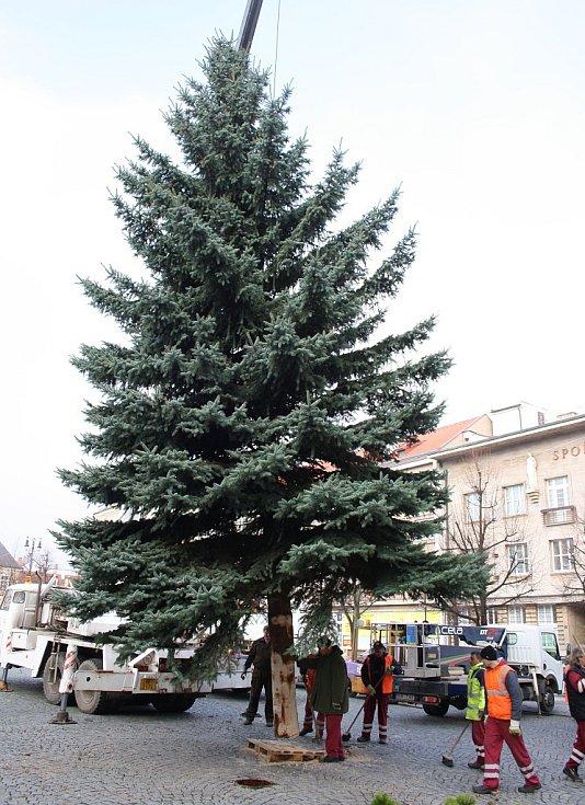 Stavění vánočního stromu v Lounech
