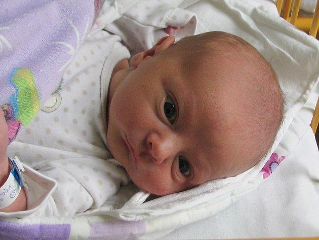 Kryštof Palicska se narodil 26. ledna 2018 ve 2.24 hodin mamince Markétě Palicskové  z Kostrčan u Lubence. Vážil 3590 g a měřil 52 cm.