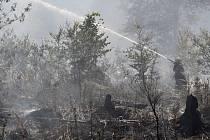 Požár lesa. Ilustrační snímek.