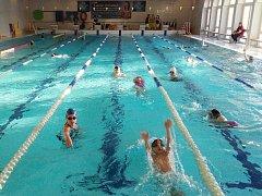 Mladí plavci při tréninku v žatecké plavecké škole.