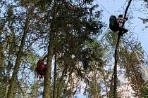 Po vzájemné kolizi skončili dva paraglidisté na Rané ve stromech. Snést je museli lezci