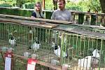 Výstava drobného zvířectva ve Smolnici