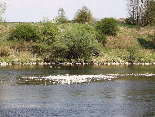 Nízký stav vody v řece Ohři na Žatecku. Z koryta vylézají početné skupiny kamenů.