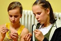Velikonoční neděli strávily děti ze ZUŠ Postoloprty a další vyslanci tohoto městečka v německém Wolkensteinu.
