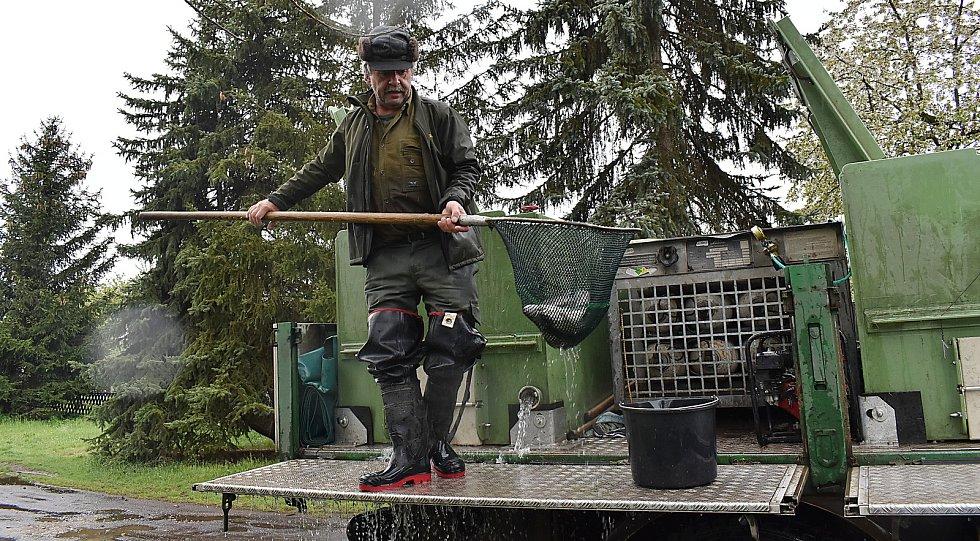 Rybáři vysadili ve čtvrtek odpoledne do Ohře mezi Nechranicemi a Žatcem metráky pstruha duhového.