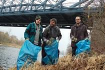Dobrovolníci uklízejí břehy Ohře v Žatci.
