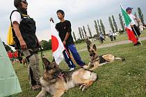 Slavnostní zahájení 16. Mistrovství světa záchranných psů na stadionu v Žatci