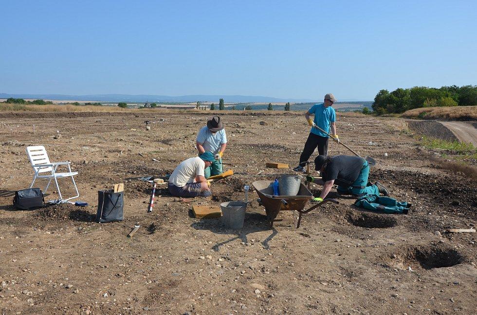 Pracovníci žateckého muzea při odkryvu pravěkého sídliště u Soběsuk vroce 2019.