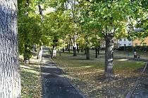 Holárkovy sady v Lounech.