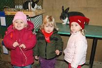 Adéla Poustecká, Agáta Povová a Daniela Hamalová se přišly podívat s rodiči na zvířata.