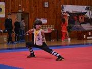 Republikový šampionát v jednom z tradičních bojových umění Wu Shu se konal v lounské sportovní hale. Na snímku je lounský mnohonásobný světový medailista Karel Korenc.
