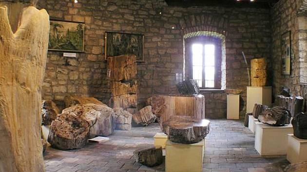 Muzeum Kamenný les v Lounech