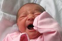 Natálie Veverková se narodila 9. února v 8.41 hodin. Vážila 3,3 kg a měřila 49 cm. Mamince Anně Veverkové gratulujeme.