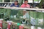 Výstava chovatelů drobného zvířectva ve Smolnici