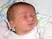 Josefína Burdová se narodila 1. ledna 2018 v 17.35 hodin mamince Petře Naseové ze Žatce. Vážila 3,21 kg a měřila a 51 cm.
