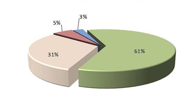 Nejužívanější nelegální drogy v okrese Louny za rok 2009
