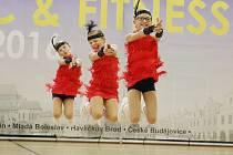 Soutěž FISAF Aerobik & Fitness 2016 v lounské sportovní hale