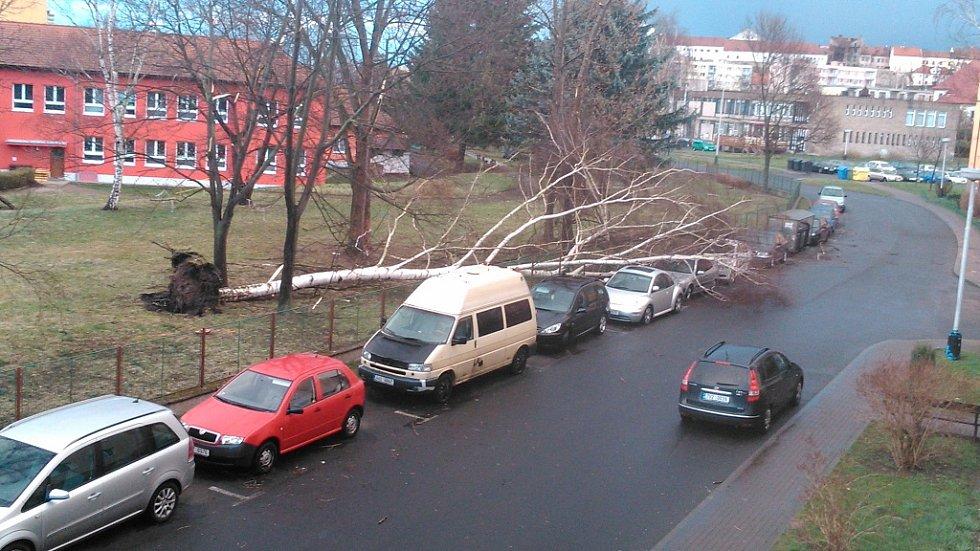 Kolem 19.15 hodin se vyvrátila velká bříza v Žatci v Podměstí. Padla ze zahrady MŠ U Jezu do ulice mezi zaparkovaná auta