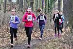V parku se mimo jiné konají také běžecké závody, tradiční Velká žatecká.