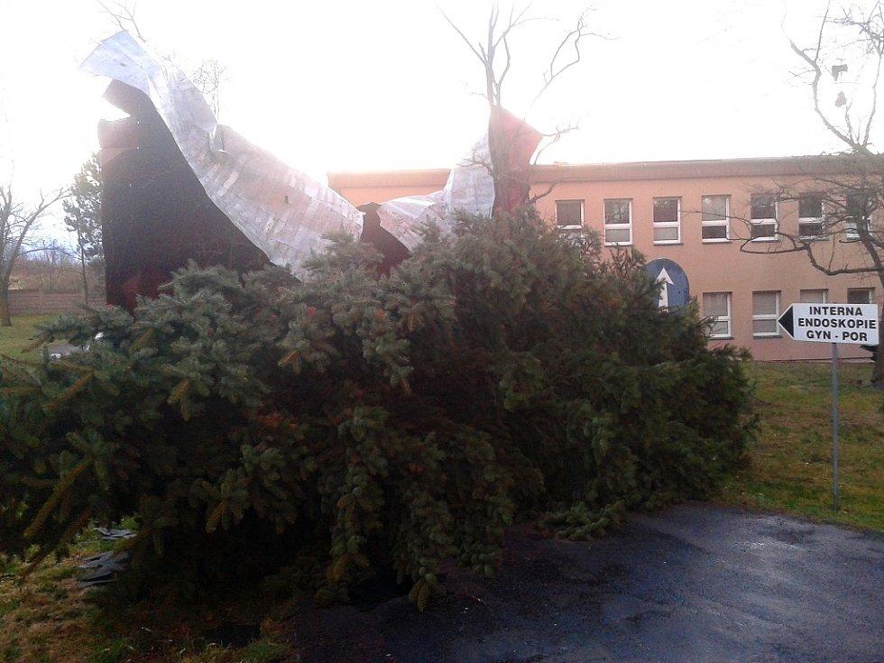 Nejen střecha, ale také vzrostlé stromy nevydržely nápor větru v Žatci