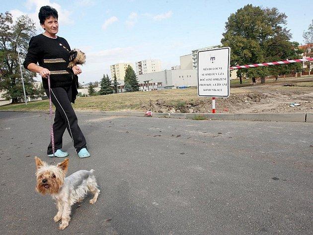Obyvatelka Loun venčí psa na Rynečku. Z travnaté plochy vznikne nový městský park, podél Hrnčířské ulice mají vyrůst nové rodinné domky.