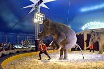 Cirkus Metropol