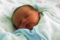 Chlapec Jan Bartoň ze Staňkovic se narodil 4. dubna v 7.10 hodin. Vážil 3,46 kg a měřil 49 cm. Mamince Daniele Bartoňové gratulujeme.