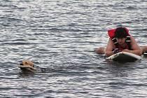 Záchranářští psi trénovali na Nechranické přehradě