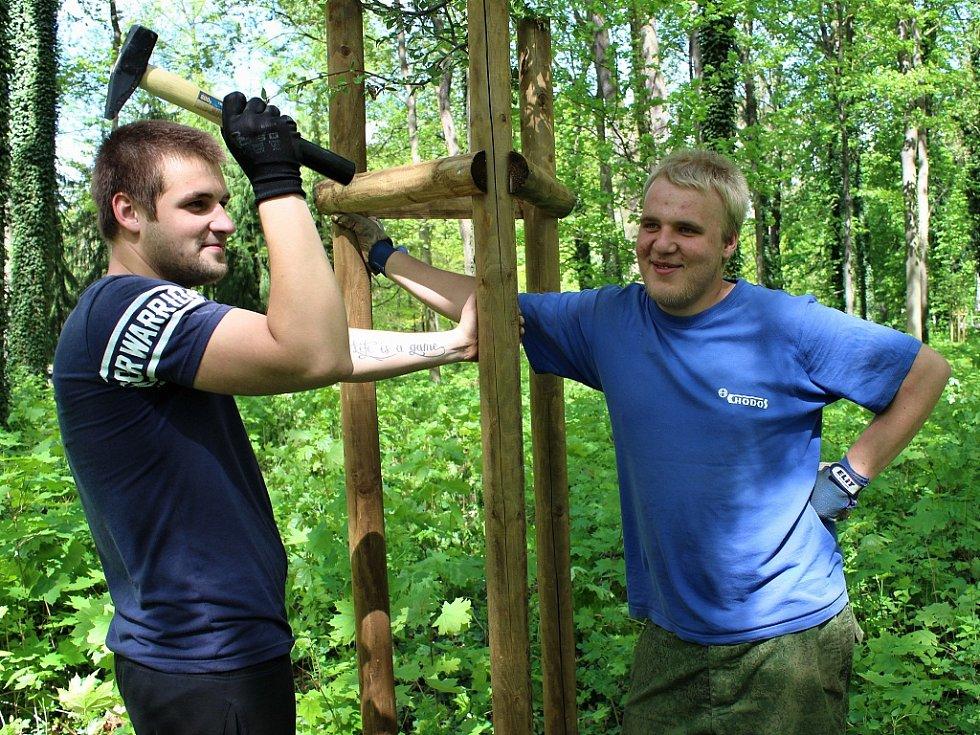 David Valenta (vlevo) a David Hošťálek pracují  na podpěře nově vysazeného stromu.