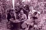 Svého času byla Deštnice, kde se pěstoval chmel již od 15. století, klíčovou obcí pro výzkum a šlechtění chmele.