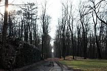 Jak přežít karanténu: Zámecký park v Krásném Dvoře je volně přístupný