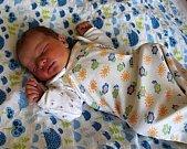 Andrej Dombaj se narodil 5. února 2019 v 16.24 hodin rodičům Janě Dombaj Peškové a Pavlu Dombajovi ze Žatce. Vážil 3500 g a měřil 52 cm.