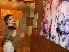 Návštěvníci jedné z výstav sbírky manželů Zemanových si ji prohlížejí v žatecké Galerii Sladovna. Archivní foto