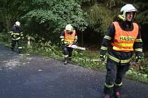 Hasiči odstraňovali v úterý 27. června dva stromy také u Holedeče. Ty vyvrátilo při havárii vozidlo
