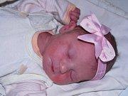 Adéla Konárková se narodila mamince Kamile Konárkové z Bezděkova 17. května 2017 v 19.35 hodin. Vážila 3,12 kg, měřila 49 cm.