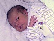 Dominik Šmejkal se narodil dne 9. září 2017 v 0.30 hodin mamince Janě Šmejkalové ze Žatce. Vážil 3600 g a měřil 49 cm.